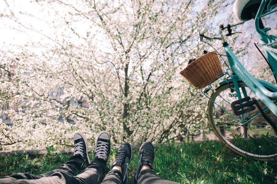 et par med cykel og forårsblomster